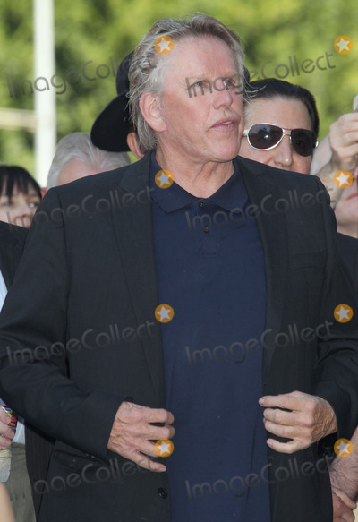 Gary Busey,Vines,Hollies,Buddy Holly Photos - 07 September 2011 - Hollywood California - Gary Busey Buddy Holly posthumous STAR Induction into The Hollywood Walk of Fame on his 75th Birthday held in front of the Capital Records Building on Vine Street Photo Credit Russ ElliotAdMedia