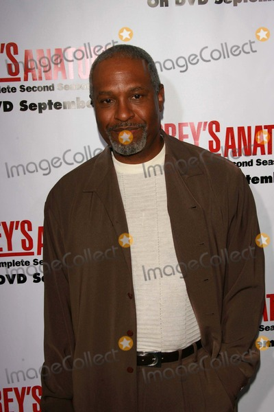 James Pickens,James Pickens Jr,James Pickens Jr.,James Pickens, Jr. Photo - Greys Anatomy Season 2 DVD Launch Party