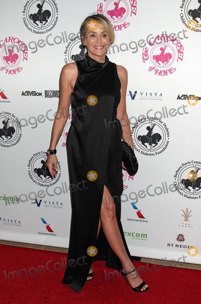 Sharon Stone Photo - The 2016 Carousel of Hope Ball