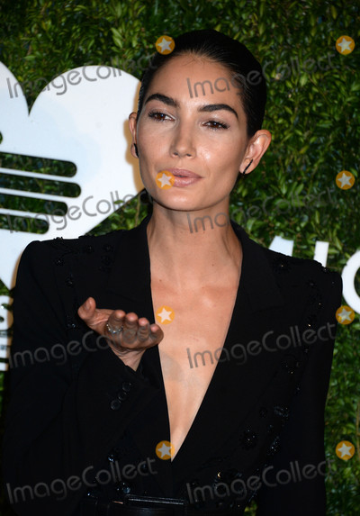 Lily Aldridge Photo - The 2016 Gods Love We Deliver Golden Heart Awards Dinner