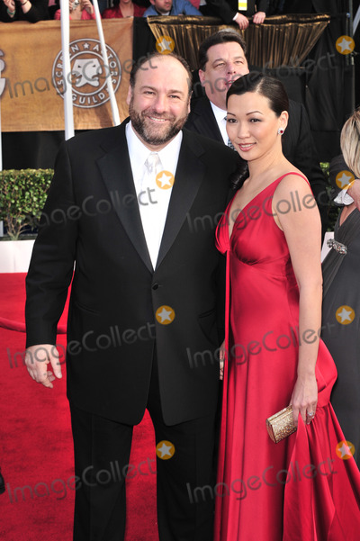 James Gandolfini Photos - James Gandolfini at the 14th Annual Screen Actors Guild Awards at the Shrine Auditorium Los Angeles CAJanuary 27 2008  Los Angeles CAPicture Paul Smith  Featureflash