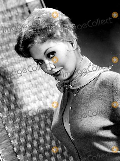 Kim Novak Photo - Archival Pictures - Globe Photos - 69575