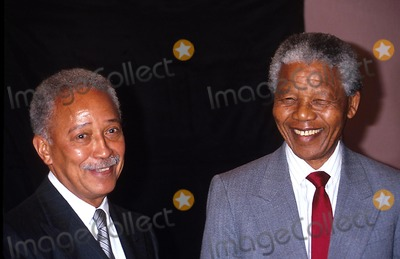 Nelson Mandela,David Dinkins Photo - Archival Pictures - Globe Photos - 84220