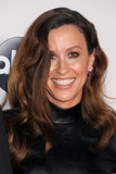 Alanis Morissette Photo - 22 November 2015 - Los Angeles California - Alanis Morissette 2015 American Music Awards - Arrivals held at Microsoft Theater Photo Credit Byron PurvisAdMedia