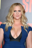 Amy Schumer Photo - LOS ANGELES - MAY 10  Amy Schumer at the Snatched World Premiere at the Village Theater on May 10 2017 in Westwood CA
