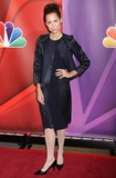 Minnie Driver Photo - 13th May 2013  The 2013-2014 NBC Upfront Presentation Red Carpet Event held at Radio City Music Hall New York City USAHere Minnie DriverKGC-146starmaxinccom