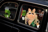Miss Piggy Photo - Constantine Kermit and Miss Piggy arrives for the premiere of Muppets Most Wanted at the Curzon Mayfair cinema London 24032014 Picture by Steve Vas  Featureflash