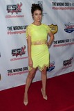 Allison Paige Photo - Allison Paige attends the Wrong Side of Right Los Angeles Premiere on July 14th-2015 at the Tcl Chinese Theatre in Los AngelescaliforniausaphotoleopoldGlobephotos