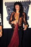 Aerosmith Photo - International Rock Awards Steven Tyler of Aerosmith Photo by Kelly JordanGlobe Photos Inc
