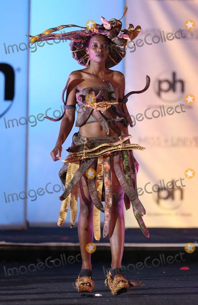 Photo - 18 November 2017 - Las Vegas NV -  Miss Tanzania Lilian Ericaah Maraule  66th Miss Universe Pageant National Costume Show at Planet Hollywood resort Hotel and Casino Photo Credit MJTAdMedia