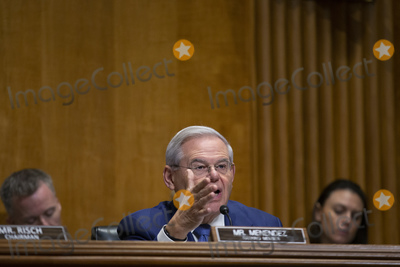 Photos From Foreign Relations Russia Hearing
