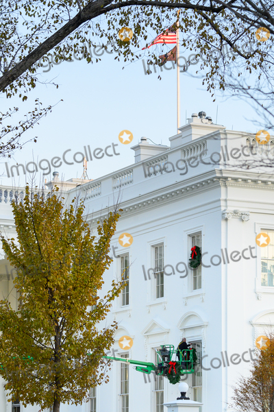 Photos From A worker hangs Christmas wreaths on the White House windows