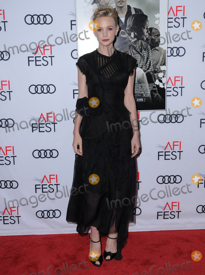 Photos From AFI FEST 2017 Opening Night Gala - Screening Of Netflix's 'Mudbound'