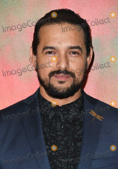 Alejandro Edda Photo - 14 November 2018 - Los Angeles California - Alejandro Edda Netflixs Narcos Mexico Season 1 Premiere held at Regal Cinemas LA Live Photo Credit Birdie ThompsonAdMedia