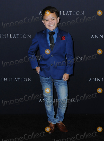 Photo - Annihilation Los Angeles Premiere