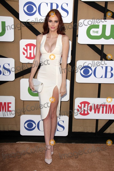 Photo - CBS Showtime CW 2013 TCA Summer Stars Party