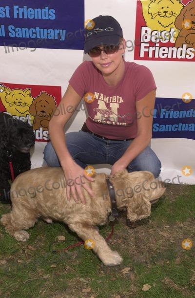 Photo - Best Friends Animal Sanctuary Pet Adoption Festival