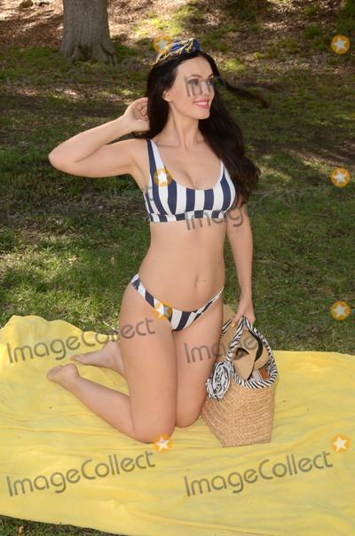 Photo - Natasha Blasick beats the heat with a bikini picnic
