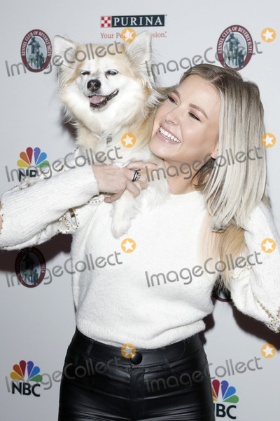Photo - Beverly Hills Dog Show Presented by Purina
