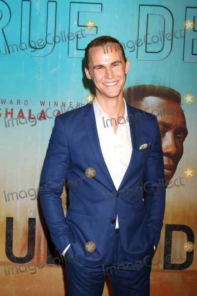 Rhys Wakefield Photo - LOS ANGELES - JAN 10  Rhys Wakefield at the True Detective Season 3 Premiere Screening at the Directors Guild of America on January 10 2019 in Los Angeles CA