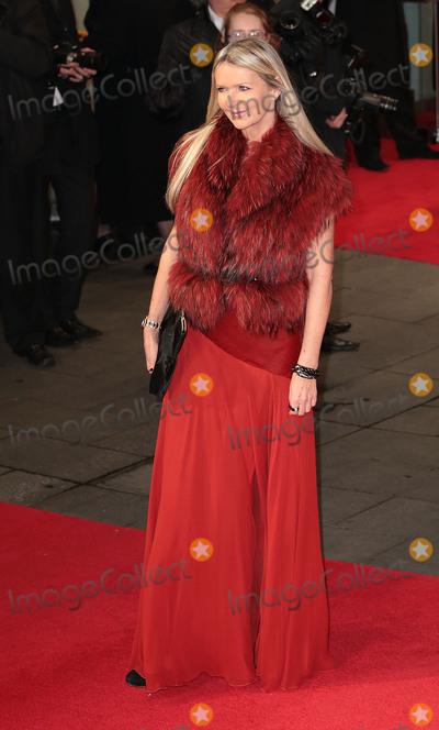 Amanda Wakely Photo - Dec 05 2013 - London England UK - The Royal Film Performance - Mandela Long Walk To Freedom Odeon Leicester SquarePictured Amanda Wakely