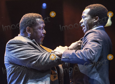 Wendell Pierce Photo - London UK   Wendell Pierce and Sope Dirisu  at the photo call for the Arthur Miller classic Death of a Salesman at the Piccadilly theatre West End London 1st November 2019 RefLMK386-S2535-011119 Gary MitchellLandmark Media WWWLMKMEDIACOM