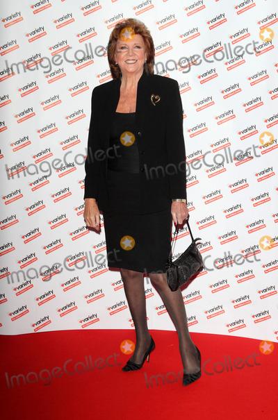 Photos From Hidden Gems Charity Auction at the Renaissance St Pancras