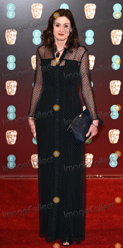 Amanda Berry Photo - London UK Amanda Berry at the EE British Acadamy Film Awards (BAFTAs) at The Royal Albert Hall on Sunday 12 February 2017 Ref LMK392 -61671-130217Vivienne VincentLandmark Media WWWLMKMEDIACOM