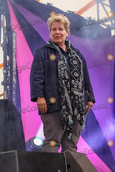 Alan Davies Photo - Southwold Suffolk Sandi Toksvig presents a special live edition of the BBC panel show QI with Alan Davies Lou Conran Rachel Parris and Marcus Brigstocke in the Comedy Arena at Henham Park near Southwold Suffolk 13th July 2018Ref LMK73-J2315-160718Keith MayhewLandmark MediaWWWLMKMEDIACOM