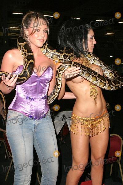 Michelle Heaton  nackt