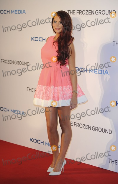 Photo - UK premiere of  The Frozen Ground