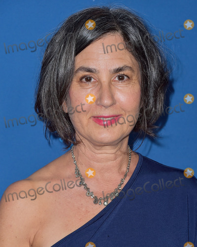 Amy Schatz Photo - LOS ANGELES CALIFORNIA USA - JANUARY 25 Amy Schatz arrives at the 72nd Annual Directors Guild Of America Awards held at The Ritz-Carlton Hotel at LA Live on January 25 2020 in Los Angeles California United States (Photo by Image Press Agency)