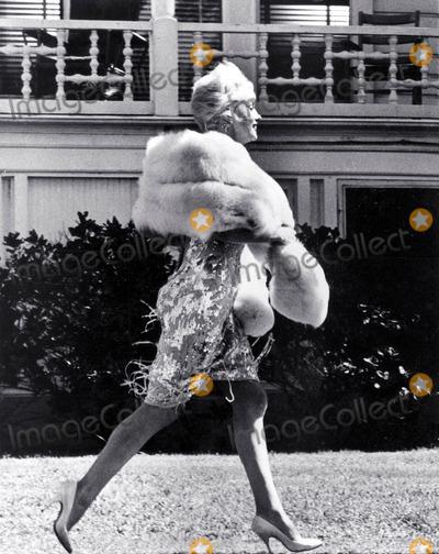 Photo - Marilyn Monroe on the Set of Some Like It Hot Photo Don OrnitzGlobe Photos Inc