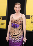 Amy Ryan Photo - 10 June 2016 - Los Angeles California - Amy Ryan Central Intelligence Los Angeles Premiere held at Westwood Village Theatre Photo Credit AdMedia