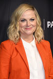 Amy Poehler Photo - 21 March 2019 - Hollywood California - Amy Poehler 2019 PaleyFest LA - NBCs Parks and Recreation 10th Anniversary Reunion held at The Dolby Theater Photo Credit Birdie ThompsonAdMedia