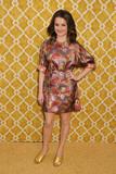 Alison Wright Photo - 31 March 2016 - Los Angeles California - Alison Wright Confirmation Los Angeles Premiere held at Paramount Studios Photo Credit Byron PurvisAdMedia