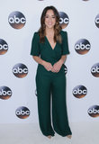 Chloe Bennet Photo - 08 January 2018 - Pasadena California - Chloe Bennet 2018 Disney ABC Winter Press Tour held at The Langham Huntington in Pasadena Photo Credit Birdie ThompsonAdMedia