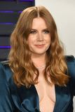 Amy Adams Photo - 24 February 2019 - Los Angeles California - Amy Adams 2019 Vanity Fair Oscar Party following the 91st Academy Awards held at the Wallis Annenberg Center for the Performing Arts Photo Credit Birdie ThompsonAdMedia