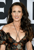 Andie Macdowell Photo - 19 August 2019 - Culver City California - Andie MacDowell Fox Searchlights Ready Or Not Los Angeles Screening held at Arclight Culver City Photo Credit Birdie ThompsonAdMedia