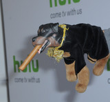 Triumph The Insult Comic Dog Photo - 05 August 2016 - Beverly Hills California Triumph The Insult Comic Dog 2016 Hulu Summer TCA held at the Beverly Hilton Hotel Photo Credit Birdie ThompsonAdMedia