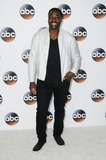 Adewale Akinnuoye-Agbaje Photo - 06 August  2017 - Beverly Hills California - Adewale Akinnuoye-Agbaje   2017 ABC Summer TCA Tour  held at The Beverly Hilton Hotel in Beverly Hills Photo Credit Birdie ThompsonAdMedia