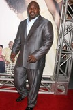 David Mann Photo - David Mann at the premiere of Tyler Perrys Meet The Browns Cinerama Dome Hollywood CA 03-13-08