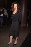 Andie Macdowell Photo -  Andie MacDowell at the premiere of Fine Line Features State And Main in Hollywood 12-18-00