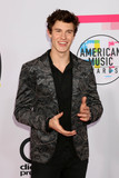 Shawn Mendes Photo - Shawn Mendesat the American Music Awards 2017 Microsoft Theater Los Angeles CA 11-19-17