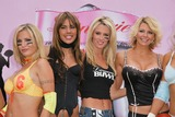 Amber Smith Photo - Willa Ford Tamie Sheffield Amber Smith and Adrienne CurryWilla Ford Ryan Starr Jenny McCarthy and Tamie Sheffield