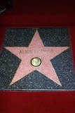 Alice Cooper Photo - Alice Coopers Star at Coopers induction into the Hollywood Walk of Fame Hollywood CA 12-02-03