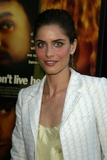 Amanda Peete Photo - Amanda Peet at the We Dont Live Here Anymore Los Angeles Premiere Directors Guild of America West Hollywood CA 08-05-04