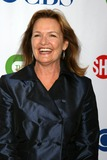 Nancy Lenehan Photo - Nancy Lenehan arriving at the CBS TCA Summer 08 Party at Boulevard 3 in Los Angeles CA onJuly 18 2008