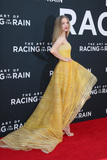 Amanda Seyfried Photo - LOS ANGELES - AUG 1  Amanda Seyfried at the The Art of Racing in the Rain World Premiere at the El Capitan Theater on August 1 2019 in Los Angeles CA