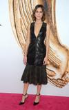 Alexa Chung Photo - Photo by Dennis Van TinestarmaxinccomSTAR MAXCopyright 2016ALL RIGHTS RESERVEDTelephoneFax (212) 995-11966616Alexa Chung at the 2016 CFDA Fashion Awards(NYC)
